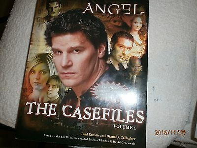 Angel paper back book / casefiles volume 2