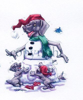 Weimaraner Christmas Card by Mike McCartney