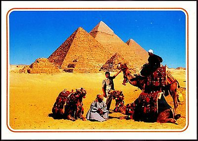 Ahmed Attallah Around The  Pyramid  Giza Egypt Unposted