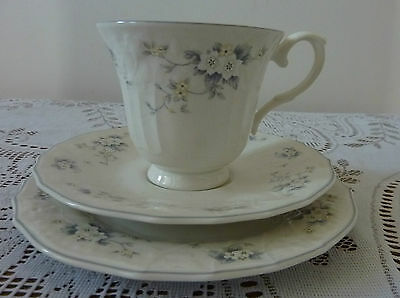 Stunning Royal Doulton Lausanne English Porcelain Cup Saucer Plate Trio C.1983
