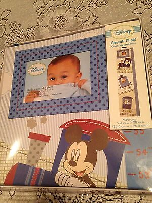 Disney Wall Growth Chart Features Photo frame mickey tigger and dalmatians