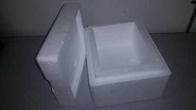 "Styrofoam shipping container 9.75 x 6.25x 7"" OD Double Insulated Cooler Foam Box"