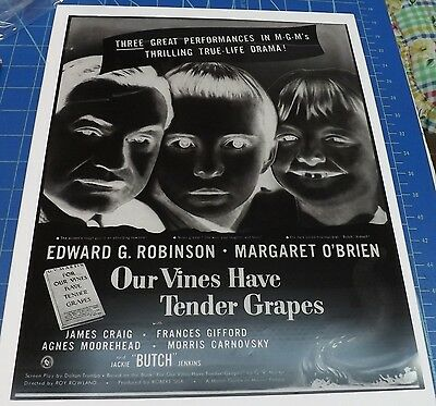 """Advertising Negative - Movie """"Our Vines Have Tender Grapes""""  approx 11X14 inches"""