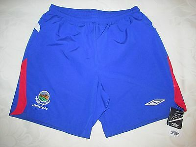 LINFIELD FC Umbro Football Shorts  -L