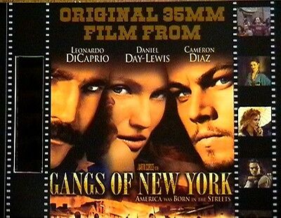 Film Cell Display 8x10 Gangs Of New York Weimaraner Rescue
