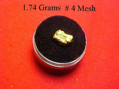Gold Nugget 1.74 Grams  Out Of The American River