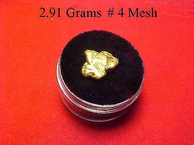 Gold Nugget 2.91 Grams  Out Of The American River