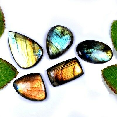231 Ct. 5 Pc Aaa Attractive Natural Labradorite Assorted Cab Gemstone A 28809