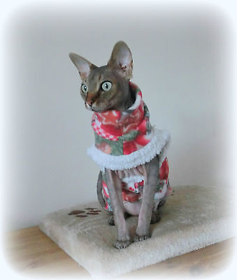 kitte CHRISTMAS costume, Comfy cat, for a Sphynx cat clothes Katze, cat clothes