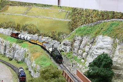 N gauge Model Railway layout, 19feet X 2feet approx