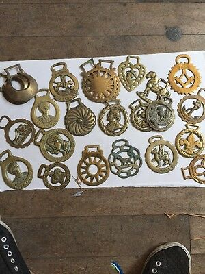 Horse Brass Collection