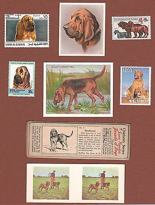 Bloodhound dog postage stamps and trade cards, set of 8