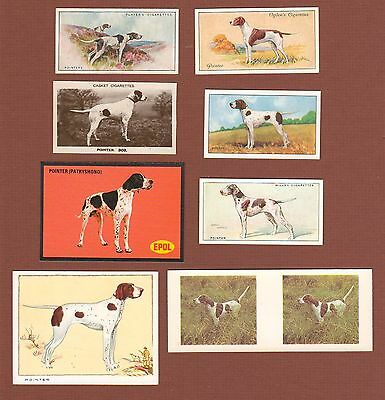 Pointer dog cigarette trade cards set of 8