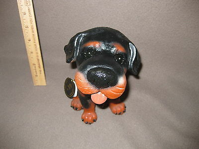 BIG NOSE DOG 8 -- Lovable cute adorable and Big Nose -- Rottweiler