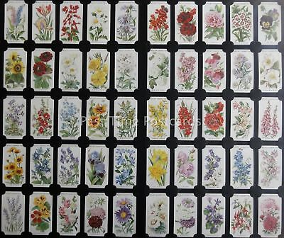 Full Set OLD ENGLISH GARDEN FLOWERS - REPRINT of W.D.& H.O. Wills 1910