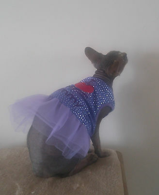 lilac DRESS Sphynx cat clothes - Katzenbekleidung Katze, pet clothes HOTSPHYNX