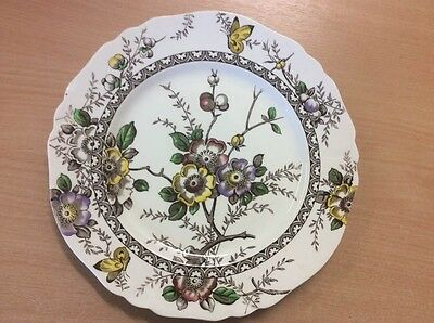 Alfred Meakin Dinner Plate, in Medway design.