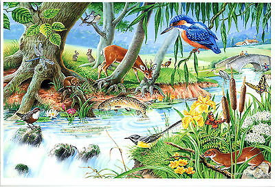 The House Of Puzzles - 250 BIG PIECE JIGSAW PUZZLE - By The Riverbank Big Pieces