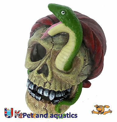 Aquarium Pirate Skull & Snake Fish Tank Ornament