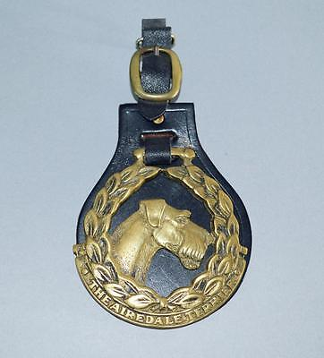 Old Horse Brass ' The Airedale Terrier ' On Leather Fob- Dogs.