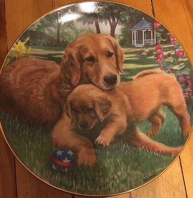 "The Danbury Mint ""Tender Touch"" Plate Collection  Golden Retriever"