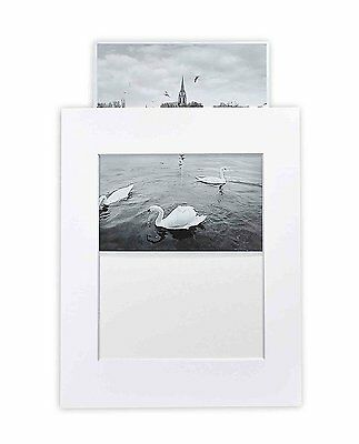 10 White 11x14 Slip-in Pre-adhesive Photo Mat for 8x10,Includes 10 clear bags