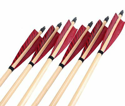"""6) 31"""" White Pine Wood Traditional Long Bow Red Turkey Feathers Archery Arrow"""