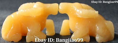 Excellent China Natural Yellow Jade Carving Cattle Oxen Bull Animal Pair Statue