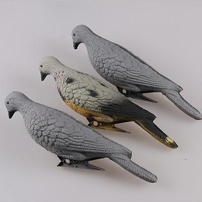 6x 3D Archery Pigeon Target EVA Real Animal Outdoor Games Hunting Practice Bow