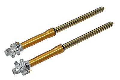 Forcella Fork Tenedor Fourche Ohlins Yamaha T-Max Tmax T Max 530 Fg 434Ag