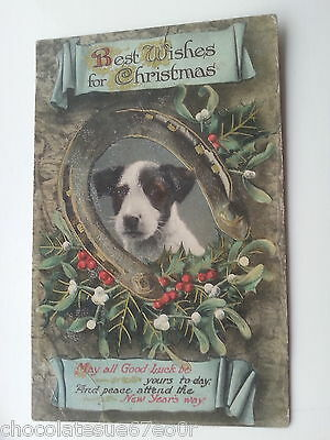 Jack Russell Terrier Dog Puppy Christmas Rare Old Antique Vintage Postcard Holly