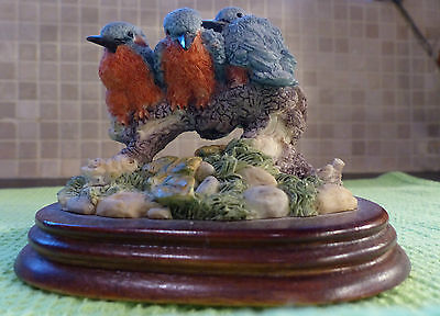 Kingfishers by Regency Fine Arts. Immaculate.