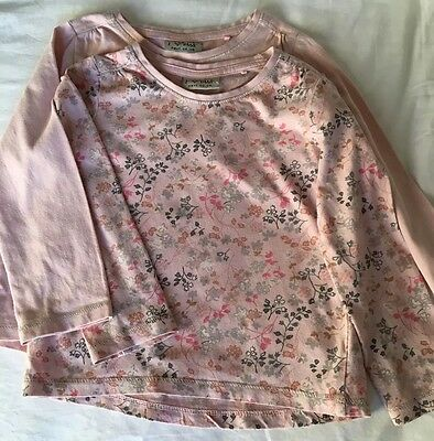 Set Of 2 Next Girls Long Pink Long Sleeved Tops 2-3 Years
