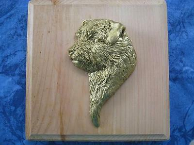 Norfolk Terrier 3D Head Study Wall Plaque by Dannyquest