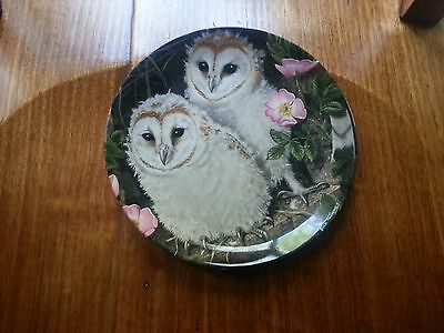 Crown Staffordshire Barn Owl Chicks collector Plate