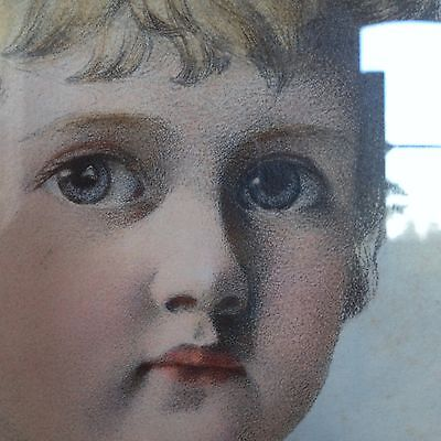 ANTIQUE Victorian lithograph/print PORTRAIT of child - PEARS SOAP ADVERT-style