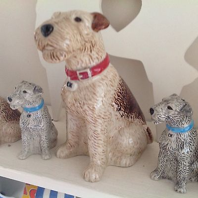 Cath Kidston Fox Terrier,Ceramic Stanley Money Box,New With Box.Retired.
