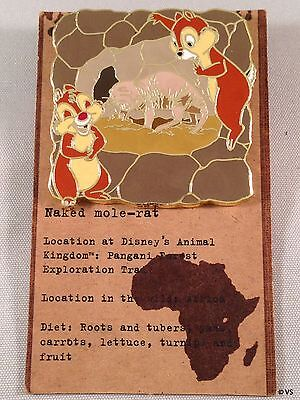 Disney Pin - Chip N Dale Naked Mole-rat Animal Kingdom Mystery 2011 WDW