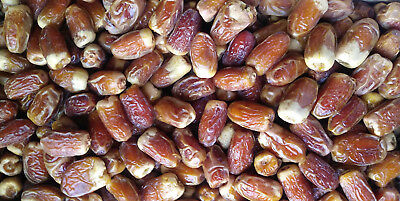 Loose Dates - From Saudi Arabia [Segay 14 oz ] 400g. تمر صقعي - BUY 4 TO SAVE $4