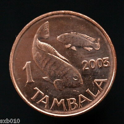Malawi 1 Tambala 2003 magnetic. km33a  UNC Africa Coin. Animals (Fauna) Fishes