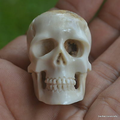 Skull Carved Beads 1pcs 38mm in Height S288 in Antler Carving