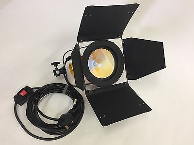 Photon Beard Photonbeam 1000W Red Head Pro Video Light, Dichroic Filter, B/doors