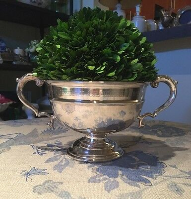 Antique Silver Trophy Bowl with Preserved Boxwood
