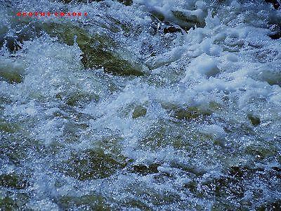 Frothy Chaos Digital Photo E-Mail Free Shipping auto Positive