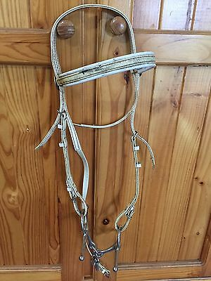 Mouthing Bridle And Key Bit For Horse Training