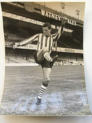 Original Press Photo 6 Inch X 9 Inch Approx Terry Paine Southampton 1963