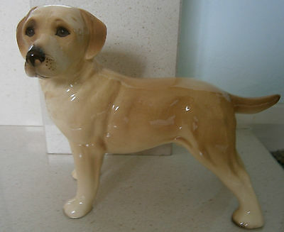 Collectable China Dog - Labrador - Perfect Condition - Used