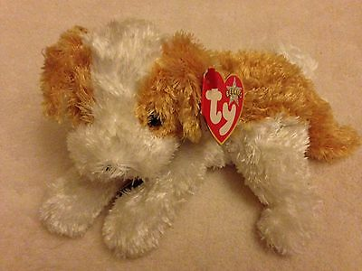 TY Beanie Baby Little Dog, With Tag - Darling