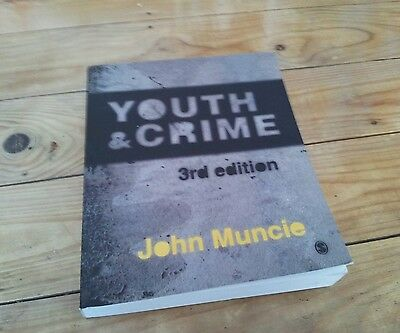 Criminology book youth crime