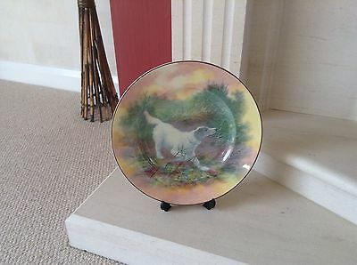 Royal Doulton Seriesware Cabinet Plate D6313-English Setter